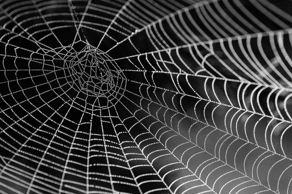 Een goede website structuur maken is belangrijk voor SEO
